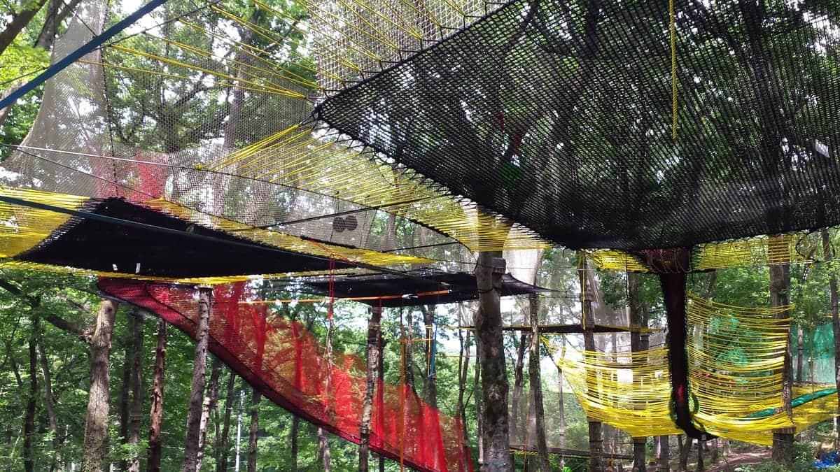 制御不能のトランポリン体験! 森の空中あそび『パカブ』が神奈川県に日本初上陸!