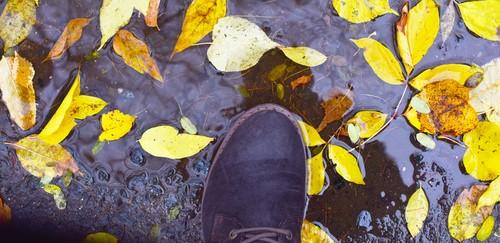 大切なスウェード靴が雨に濡れてしまったら……雨染み対策